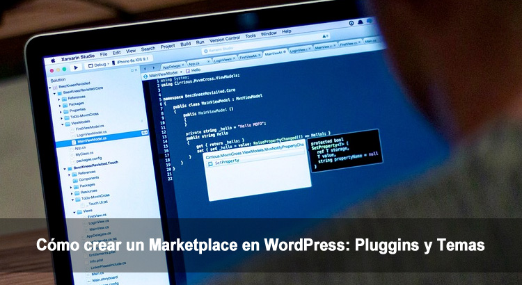 Guía │Cómo crear un Marketplace en WordPress: Plugins y Temas